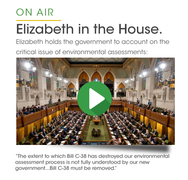 Elizabeth in the House