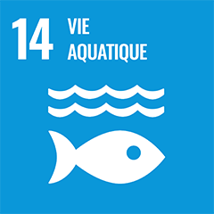 UN Sustainable Development Goal Goals: 14 - Life below water