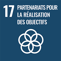 UN Sustainable Development Goal Goals: 17 - Partnerships for the goals